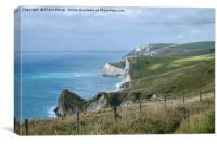 The Jurassic coast, Dorset., Canvas Print