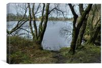 Venford Reservoir, Canvas Print