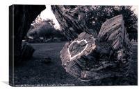 Loving Tree, Canvas Print