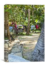 Washing line in Kerala Glades, Canvas Print