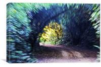 Motion Blue Tree Tunnel, Canvas Print