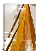 Draped Sari, Canvas Print