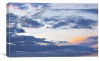 Freedom Flight, Canvas Print