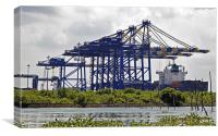 Kochin Container Terminal surounded by Hyacinth In, Canvas Print