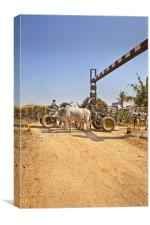Bullock cart congestion Railway junctions hinte, Canvas Print