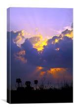 Purple Patch Pondicherry, Canvas Print