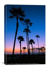 Purple Sunset at Venice Beach, Canvas Print