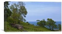 Hillside by Murlough Bay, Canvas Print