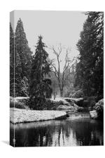 Winter in Pruhonicky Park, Canvas Print