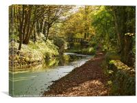 Cromford Canal, Derbyshire, Canvas Print