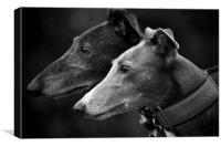 Rolo & Molly, Canvas Print