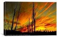 Sky Fire Sunrise, Canvas Print