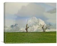 February Fields, Canvas Print