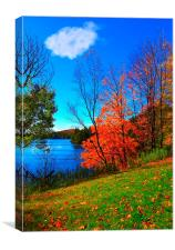 Red Autumn Blaze, Canvas Print