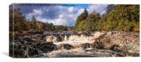 Salmon Leap Falls, Canvas Print