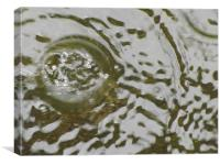 rain, Canvas Print
