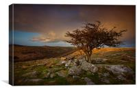 Dartmoor Sunset 3, Canvas Print