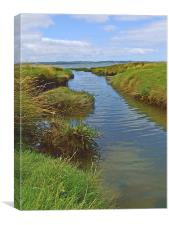 Salt Marsh Stream, Canvas Print