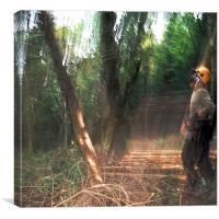 Treefall, Canvas Print