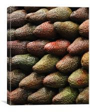Advacado's, Canvas Print