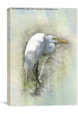 Great Egret Resting, Canvas Print