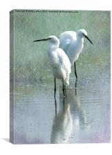Great Egrets Wading, Canvas Print
