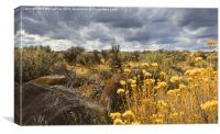 Oregon High Desert Vista