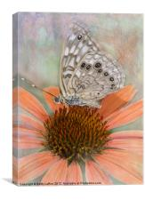 Hackberry Emperor Butterfly, Canvas Print