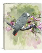 African Gray Among the Blossoms, Canvas Print