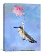 Hummingbirds Like to Swing, Canvas Print