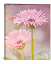 Delightfully Pink, Canvas Print