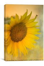 Star of the Show, Canvas Print