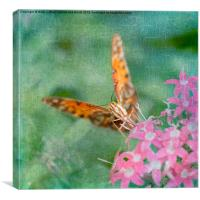 Summer Butterfly, Canvas Print