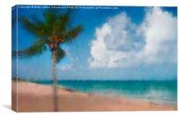 Caribbean Dreams, Canvas Print