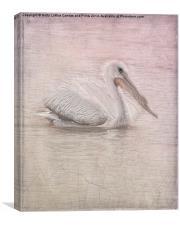 Pelican in Pastel, Canvas Print