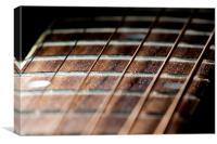 Guitar Neck, Canvas Print