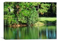 Beautiful Lake, Canvas Print