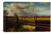 Wild Geese, Canvas Print