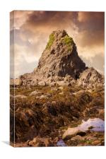 Widemouth Bay, Canvas Print