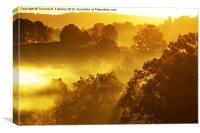 Misty Mountain Sunrise, Canvas Print