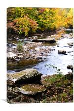 Autumn Cranberry River, Canvas Print