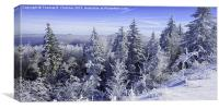 Winter along the Highland Scenic Highway, Canvas Print