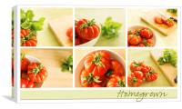 Simply Tomatoes Storyboard, Canvas Print