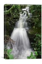 Summer Waterfall, Canvas Print