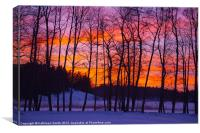 Sunset in winter landscape, Canvas Print