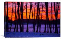 Sunset behind trees, Canvas Print