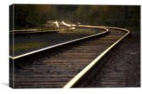 railway track, Canvas Print