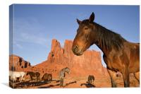 Indian Horses at Monument Valley, Canvas Print