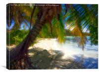 Isla Contoy Paradise, Canvas Print
