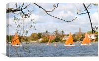 Sailing on Oulton Broad near Lowestoft, Canvas Print